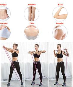 Élastique Fitness MF3372 - Full body Workout